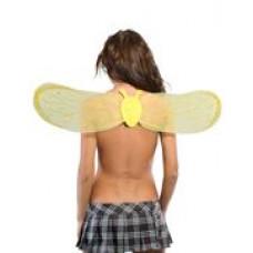 Полупрозрачные крылья пчелки